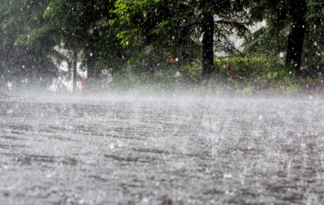 The Monsoon: Blessing or Travesty?