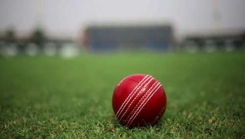 Pakistan Cricket Board Appoints First Female Director