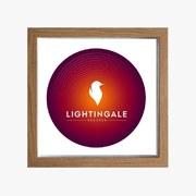 Ali Zafar Launches Lightingale Records